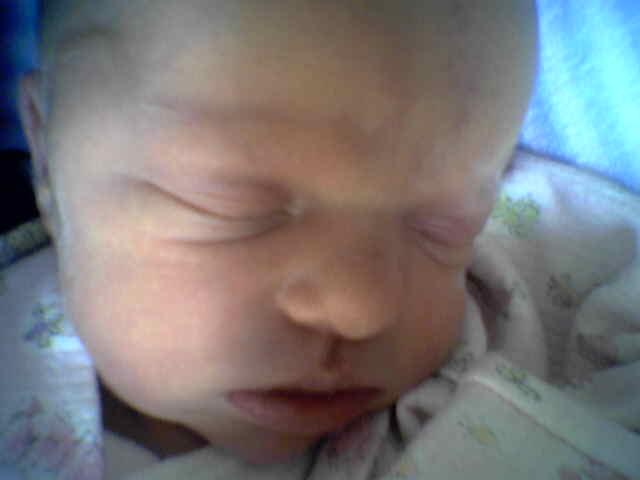 Three days old
